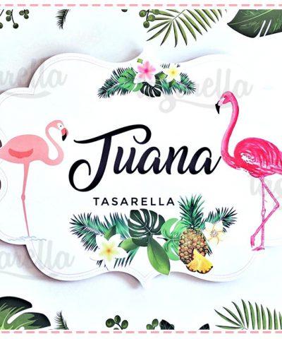 Flamingo Temalı Parti Konsepti
