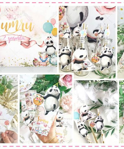 Pastel Panda Parti Konsepti