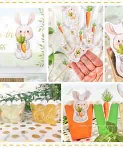 Obur Tavşan Temalı Parti Konsepti
